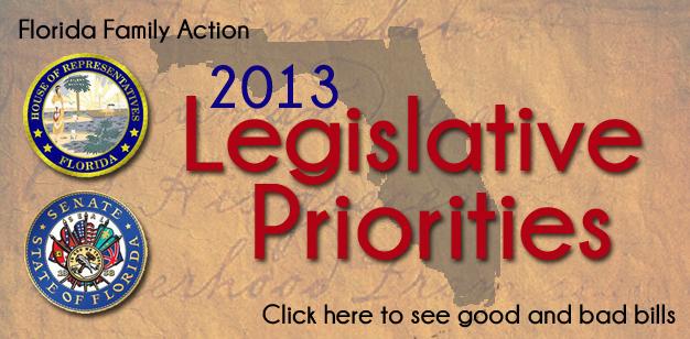 Final 2013 Legislative Report