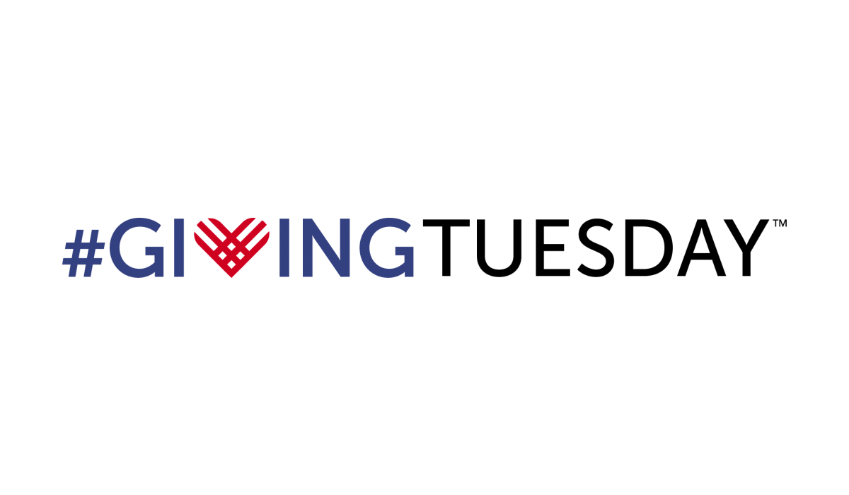Investing in Unique, Strategic and Historic Results. #GivingTuesday